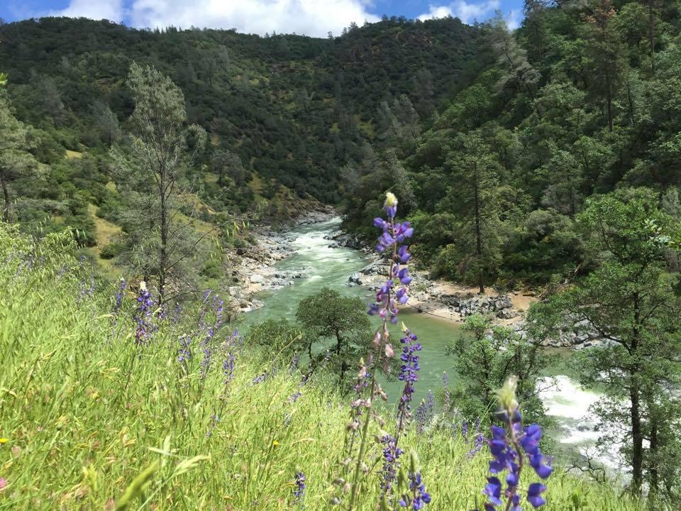 Yuba river